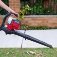Top Best Leaf Blower Vacuum Reviews